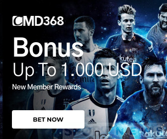 Bonus up to 1000 usd cmd368